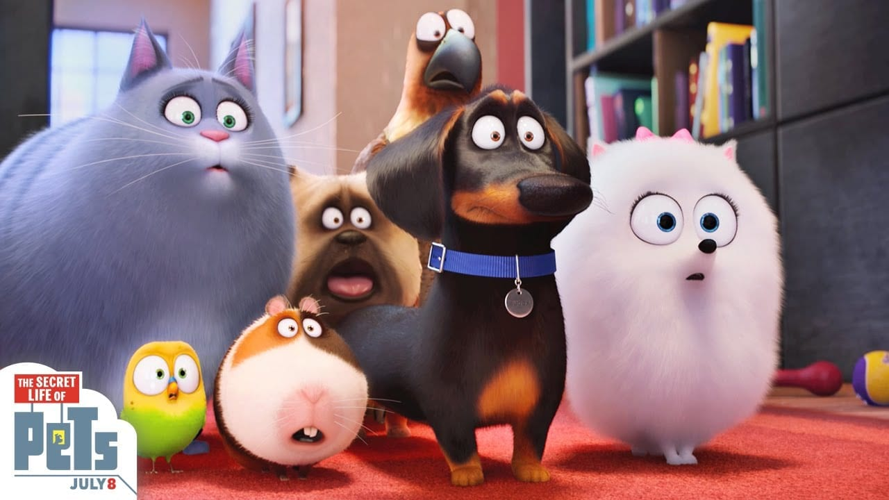 The Secret Life of Pets: Review