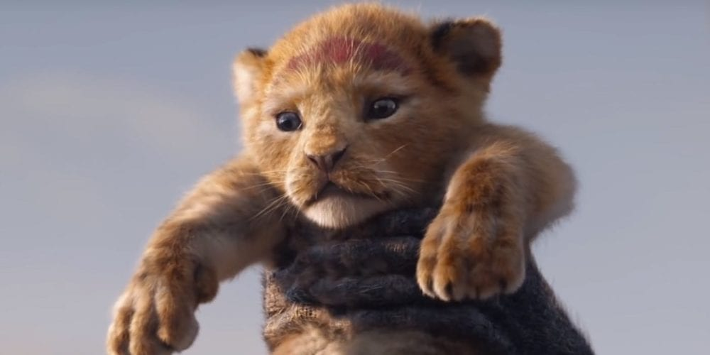 "<span class=""entry-title-primary"">Disney Has Finally Released A 'Lion King' Teaser!</span> <span class=""entry-subtitle"">Simba is very cute.</span>"